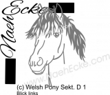 Aufkleber Welsh-Pony Sektion D 1